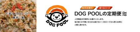 DOG POOLの定期便スタート!!